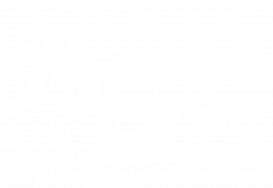 Mark Weseman White Logo